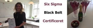Six Sigma Black Belt certificering