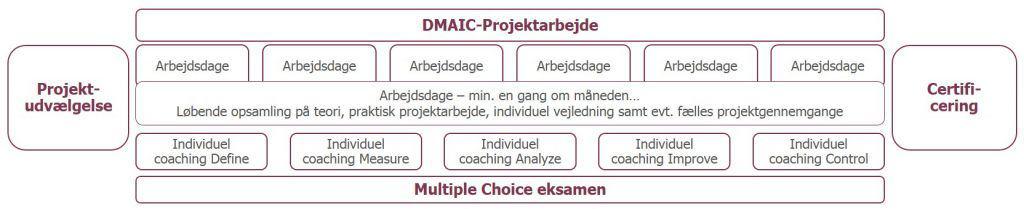 DMAIC projekt