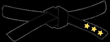 master-black-belt